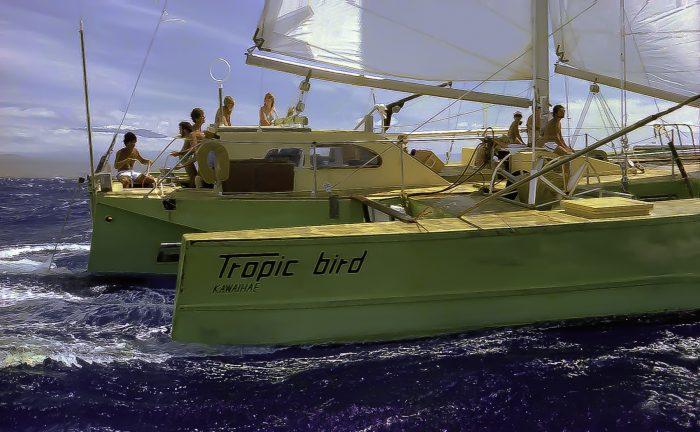 Tropic Bird, 56-foot Sailing Fishing Trimaran - New Age Of Sail